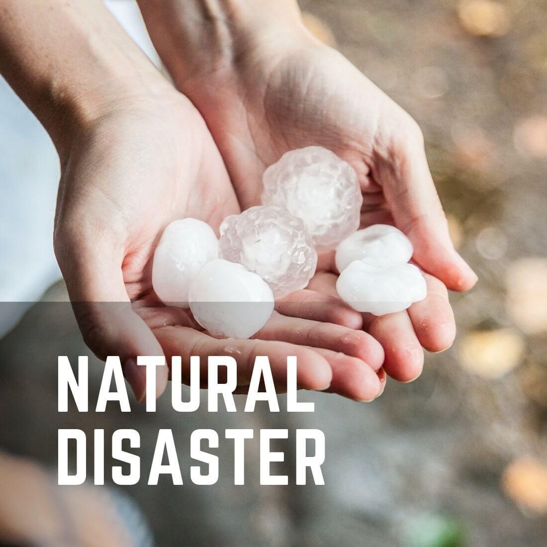 Natural Disaster Restoration Services